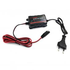 Сетевое зарядное устройство для АКБ Merlion TE4-023