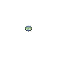 Диск CD Verbatim 700Mb 12x Cake box 10шт (43480)